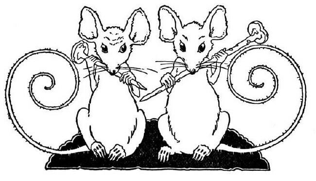 pictures of mice