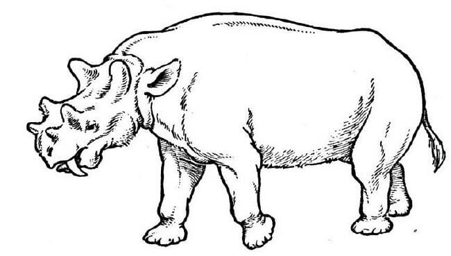 prehistoric animal - Animal Pictures To Color And Print